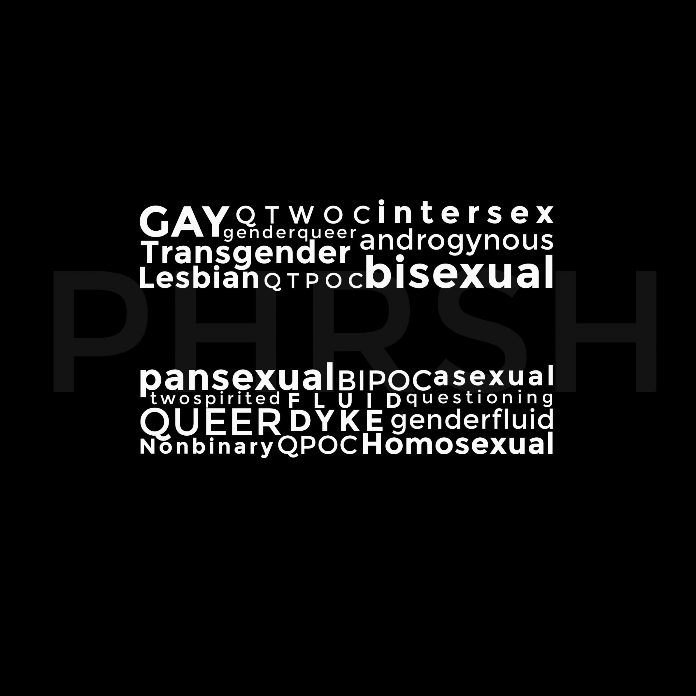 "A black sticker with a white equal sign in the center. Looking closely, the equal sign is made out of words such as ""BIPOC, GAY, Asexual, etc. Faded in the background is the word ""PHRSH"""